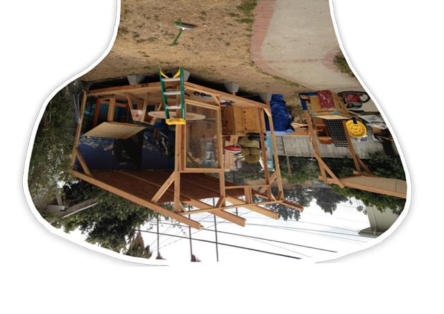 Adam-Janes-backyard.jpg